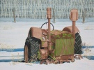 Only portions of the green paint remains to identify the maker of this old implement that stands abandoned in a pasture East of Watson, SK.  The harsh winter sunlight casts patterns of darks and lights accenting the variety of shapes in the tractor.