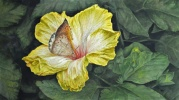 A visit to the Edmonton Botanical Gardens was the inspiration for this painting.