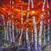 It's fall time and the birches are blazing with colour!